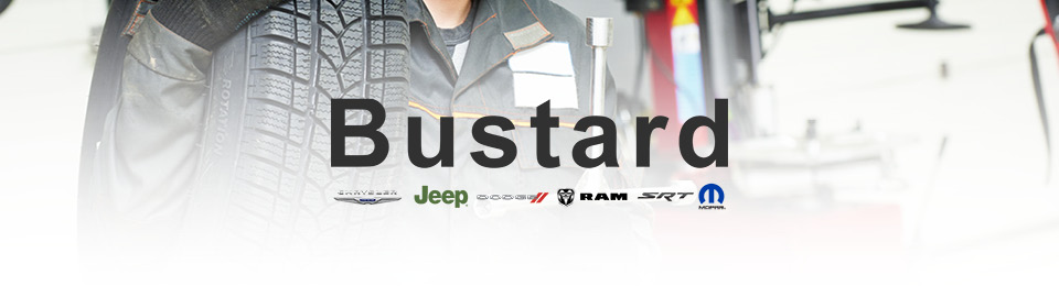 Bustard Chrysler logo