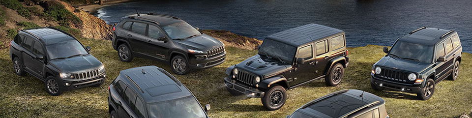 New Jeep Patriot / Compass replacement