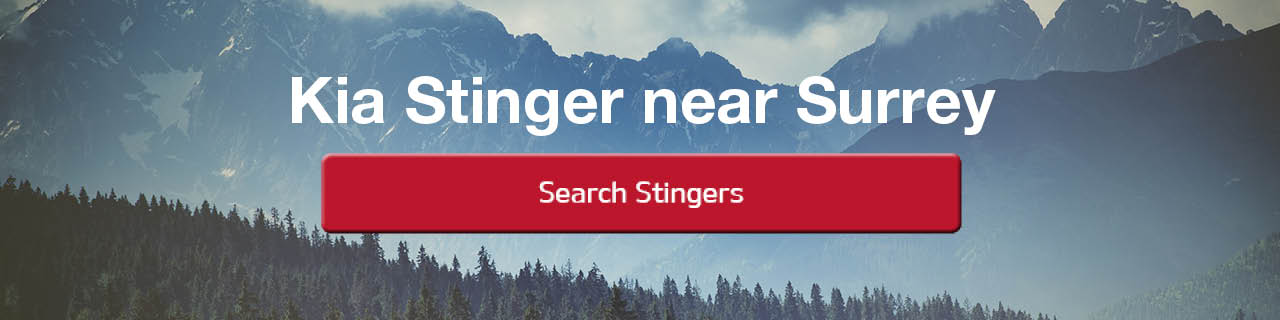 Search Stingers